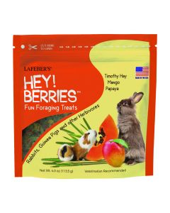 Hey!Berries™ Fun Foraging Treats, 4 oz.
