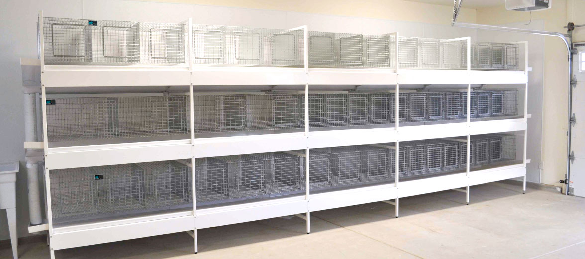 KW Cages Store - Rabbit Cages - Rabbit Supplies - Rabbit